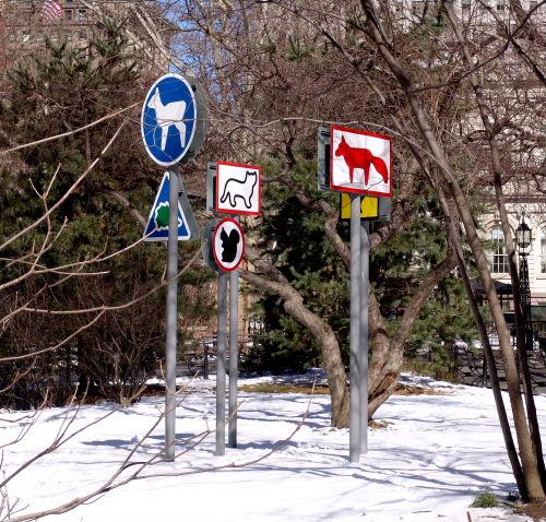 walk31pic.jpg