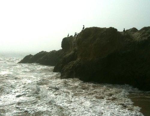 high-tide.jpg