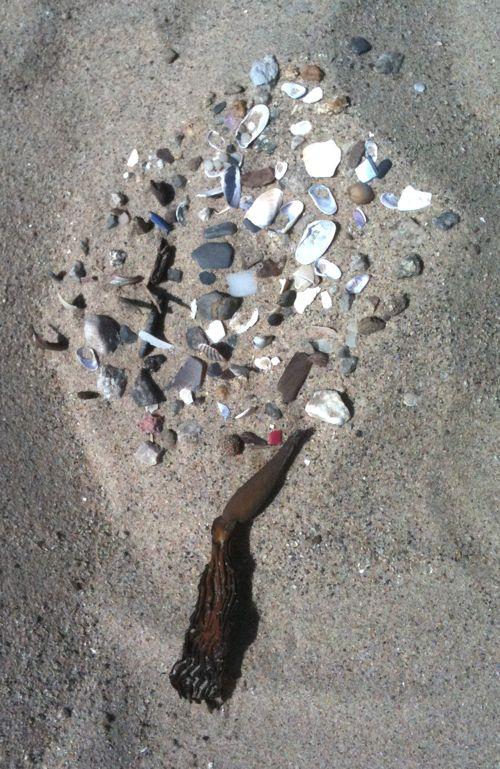 shell-tree.jpg